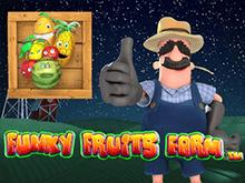 Простой способ заработка денег – слот Funky Fruits